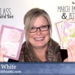 ONLINE CLASS: 8 Card Mega Class and alternate Paper Pumpkin Set and more