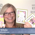 ONLINE CLASS & VIDEO: August 2018 Paper Pumpkin Kit, Alternate Card Set & Giveaway