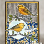 CARD: Thoughts for You from the Best Birds stamp set