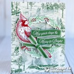 CARD: May Your Days Be Merry & Bright Cardinal Card