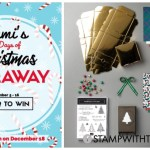 DAY 2 of  12 Days of Christmas Giveaways  – Enter Here