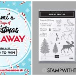 DAY 6 of 12 Days of Christmas Giveaways  – Enter Here