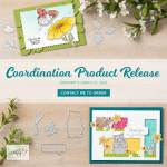 Coordinate with your Sale-a-bration Products