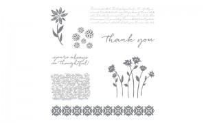 Background Bits hostess stamps