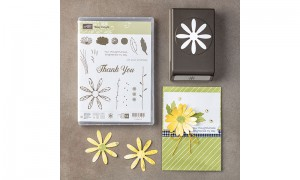 Daisy Delight stamps and punch