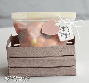 Wood Textures Suite