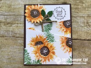 stampin up autumn harvest stamp set cards22