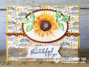 stampin up scoop painted autumn suite2