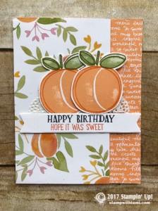 stampin up stampin Stampin Up  Fresh Fruit Stamp set