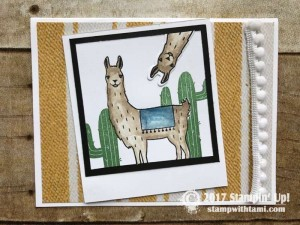 stampin up stampin Stampin Up Birthday Fiesta Stamp set