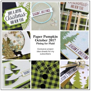 Sneak Peek at the October 2017 Pining for Plaid Paper Pumpkin Kit exclusive alternate projects ...#stampyourartout #stampinup - Stampin' Up!® - Stamp Your Art Out! www.stampyourartout.com