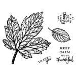 The September 2017 Layered Leaves Pumpkin kit stamp set. #stampyourartout #stampinup - Stampin' Up!® - Stamp Your Art Out! www.stampyourartout.com
