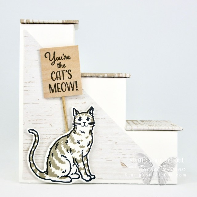 """Click here to see another Stair Step 3-D fun-fold card that I made with the Wood Textures Designer Paper (retiring soon), the Nine Lives Stamp Set, and the Cat Punch. I altered the measurements that I've seen in other similar cards so it fits in a standard A2 envelope (when folded flat they measure 4-1/8"""" x 5-1/2""""). I've also shared a link to my how-to video for tips and tricks! #stampyourartout #stampinup - Stampin' Up!® - Stamp Your Art Out! www.stampyourartout.com"""