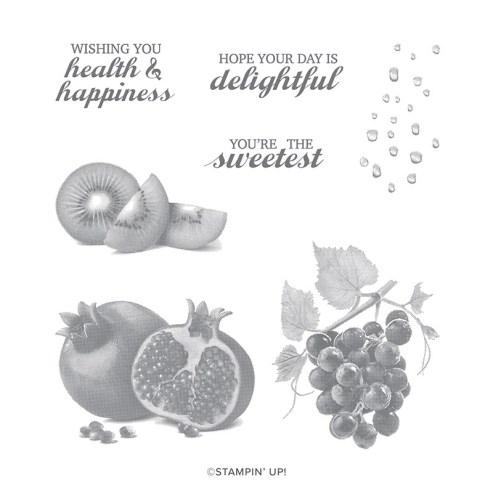 Slice of Happiness Stamp Set. #stampyourartout #stampinup - Stampin' Up!® - Stamp Your Art Out! www.stampyourartout.com