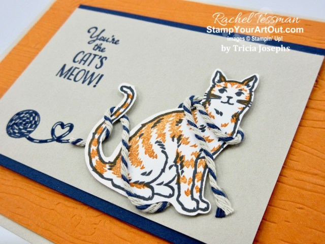 Thirteen creative birthday cards I received this year (2019) made with current/recent Stampin' Up! products. #stampyourartout #stampinup - Stampin' Up!® - Stamp Your Art Out! www.stampyourartout.com