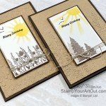 Here are a couple more cards that I created with my leftover elements from the March 2021 Here's to You Paper Pumpkin Kit. Click here for more photos, measurements, a supply list, and helpful tips. - Stampin' Up!® - Stamp Your Art Out! www.stampyourartout.com