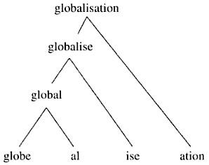 morphology tree diagram lumbar puncture morphogasmic affixation sentence first affixes