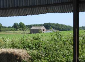 Stand - Campaigning to save the area north of Dorchester – North of Frome Whitfield Lane, between the B3143 and A35.