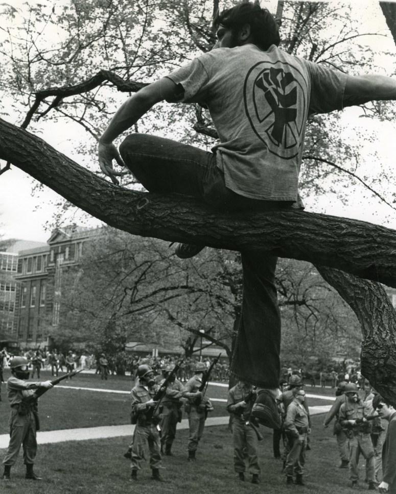 osu.man in tree