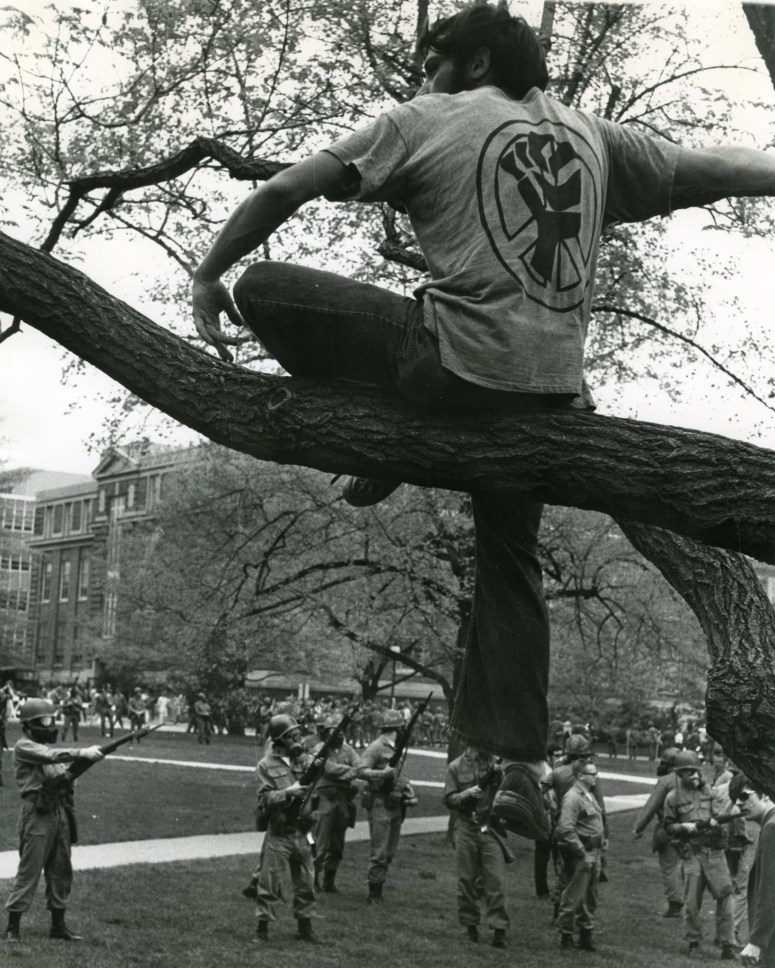 osu.man in tree