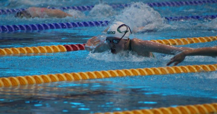 Ally Larson ('19) commits to Northwestern University swim team