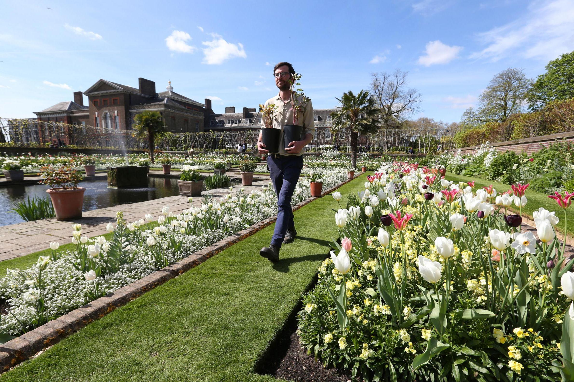 Princess Diana Memorial Garden Opened At Kensington Palace