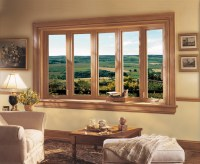 Standard Window Sizes Guide