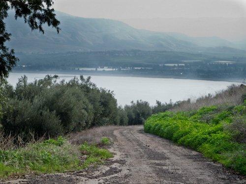 Back road through Kibbutz Degania fields toward the shore.