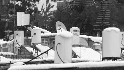 snow_13121456