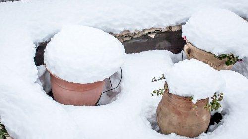 snow_13121459