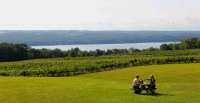 Photo of two people at a picnic table with vineyards in background