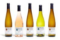 Photo of five bottles of wine