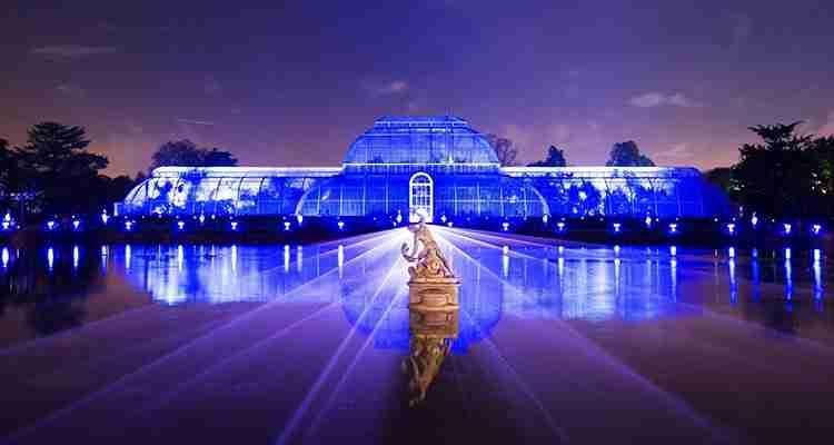 Midas and Christmas at Kew