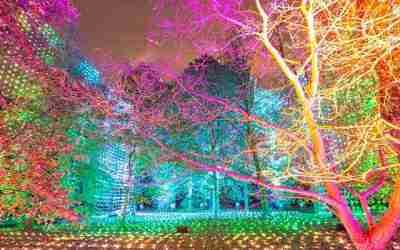 Illuminated trail