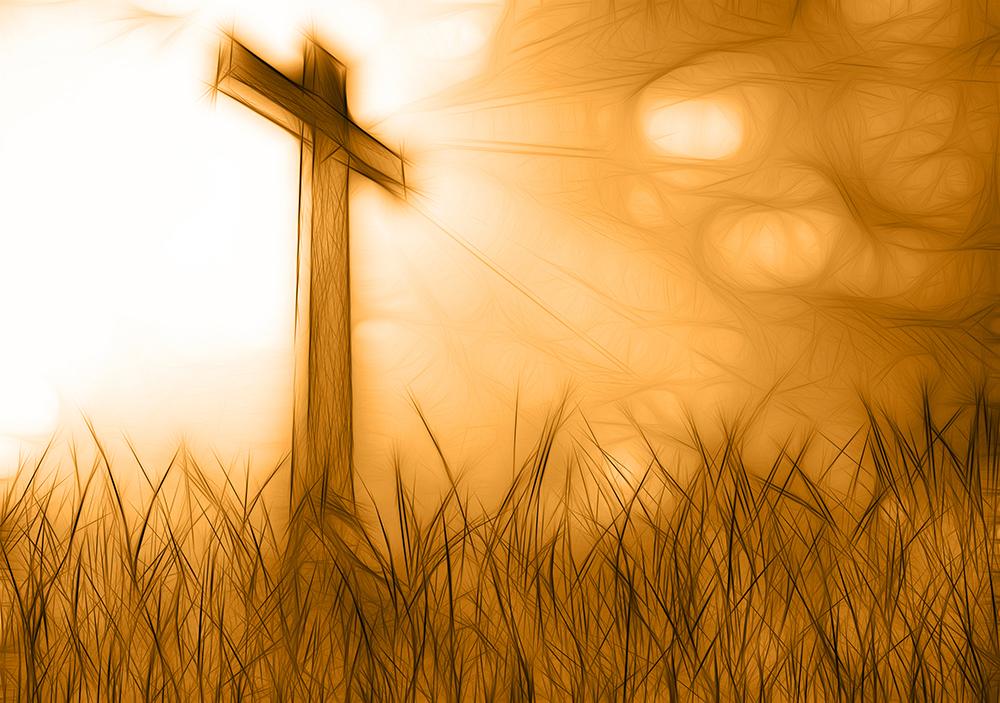 cross_faith