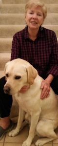 guide-dogs-for-the-blind