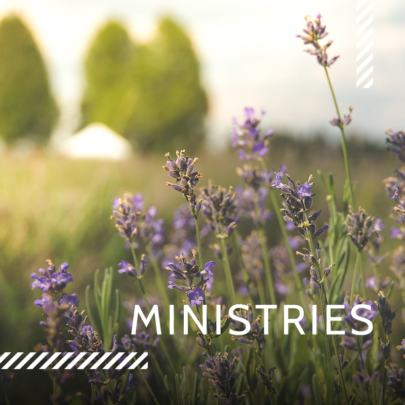 Our Ministries offer a wealth of opportunity to serve.