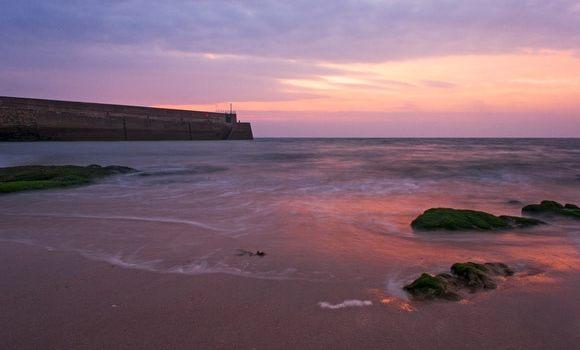 Tradition Plunges St Andrews into the Sea