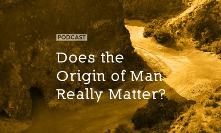 Does the Origin of Man Really Matter?