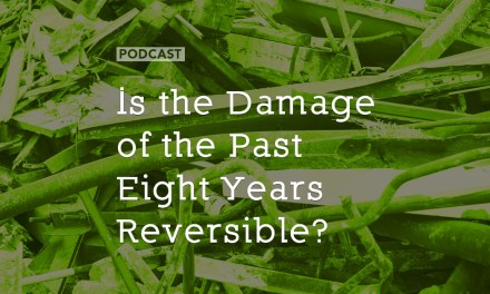 Is the Damage of the Past Eight Years Reversible?
