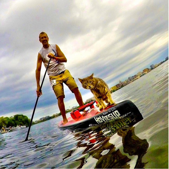 """@chuckpatterson: """"Lake Life"""" Madison, Wisconsin #gopro #HERO4Session #catsup #onlyinthemidwest #catlife @gopro"""