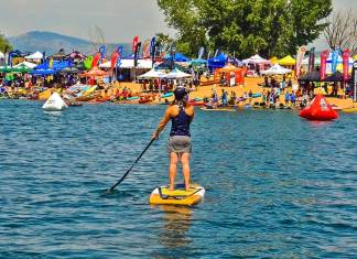Salted Not Shaken | The Pineview Perspective From Demo Day