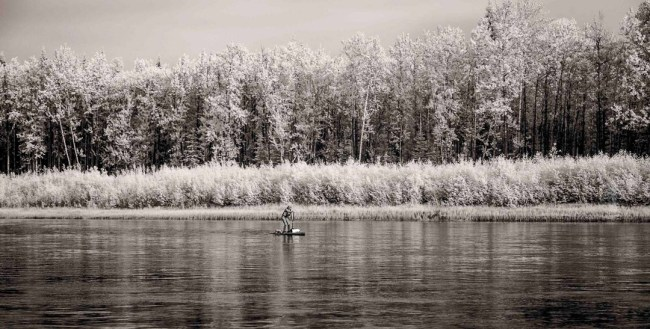 Yukon River Quest solo paddler