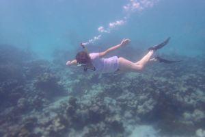 snorkel tobago
