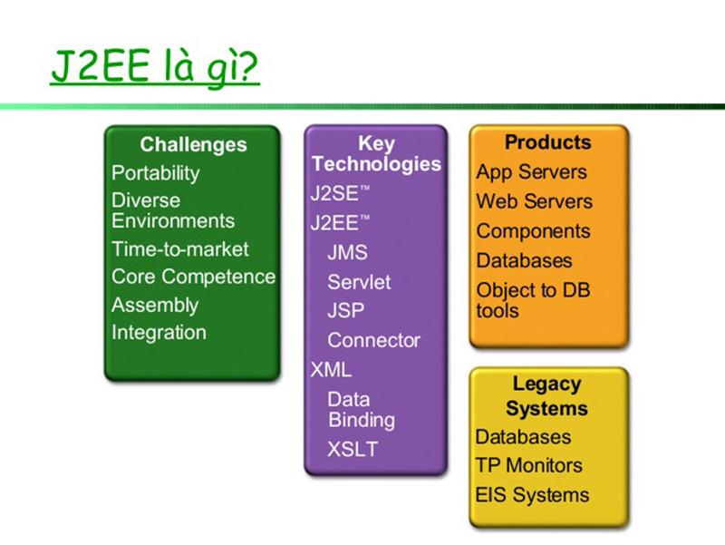 học lập trình web j2ee tại Stanford