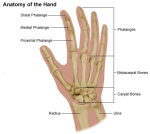 Hand Pain and Problems | Stanford Health Care