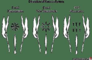 Ascites & Venous Patterns | Stanford Medicine 25 | Stanford Medicine