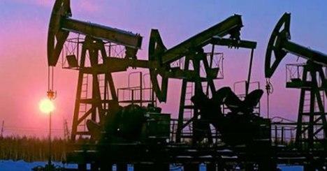 nafta-polje