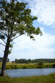 Усса. Окрестности Станьково. Лето 2011. Фото Ильи Бражникова