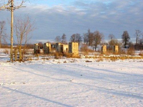 Руины усадьбы Рущица. Фото globus.tut.by